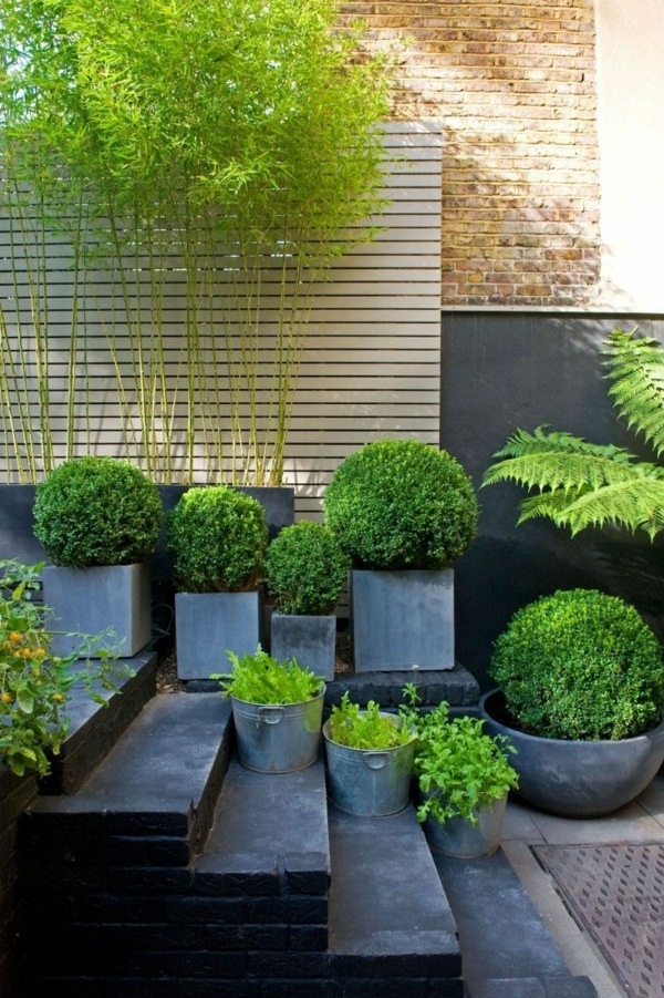 Creating garden landscaping ideas