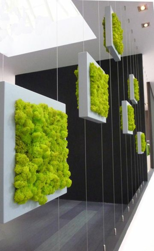 Creating vertical garden make gardening ideas