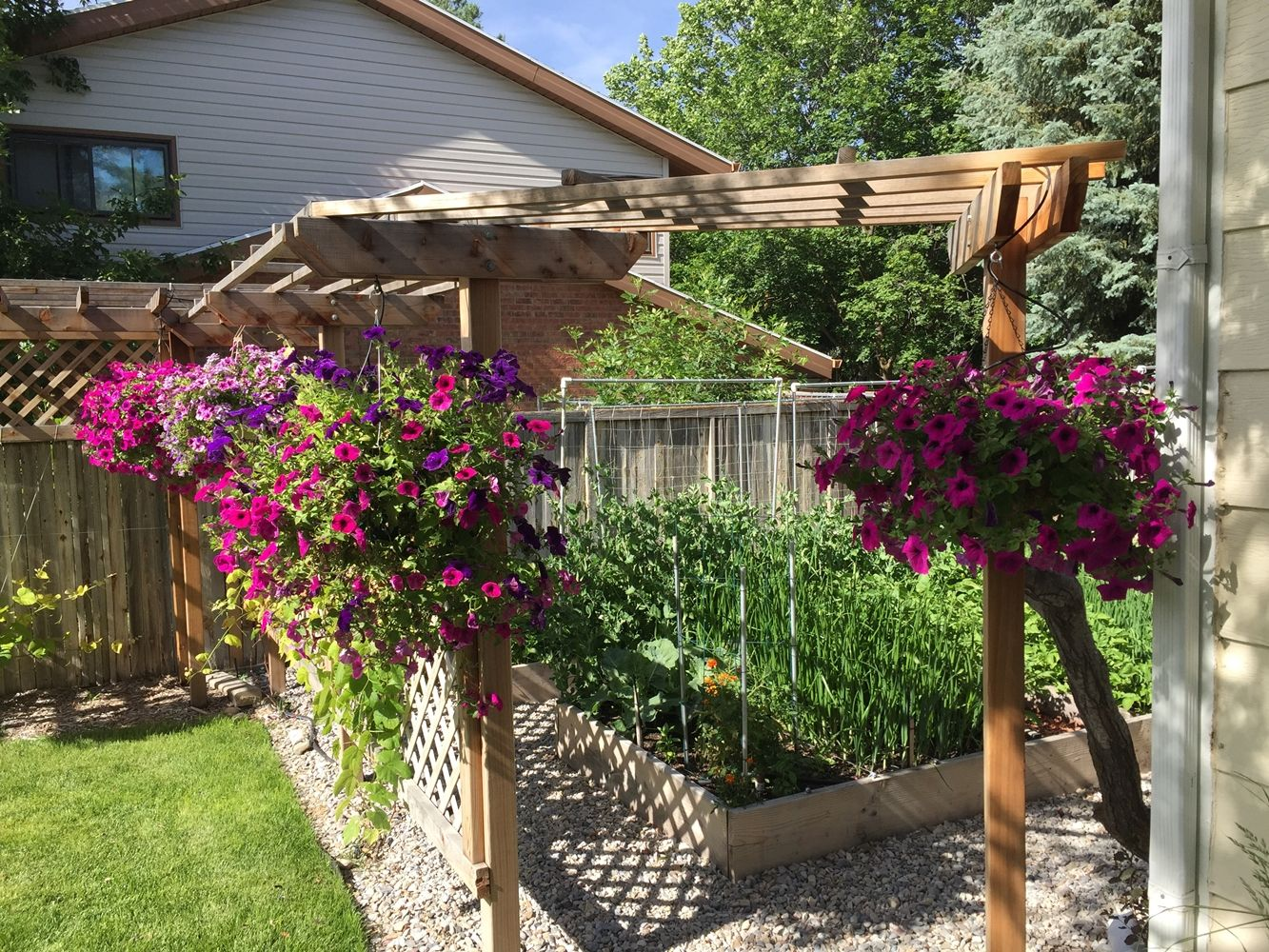 DIY Flower Bed Starts- colorful hanging plants