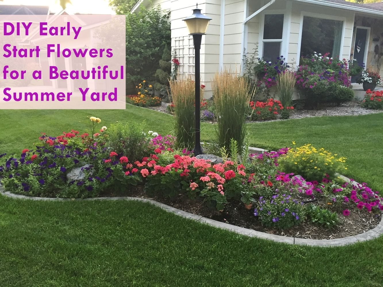DIY Early Start Flowers for Flower Boxes