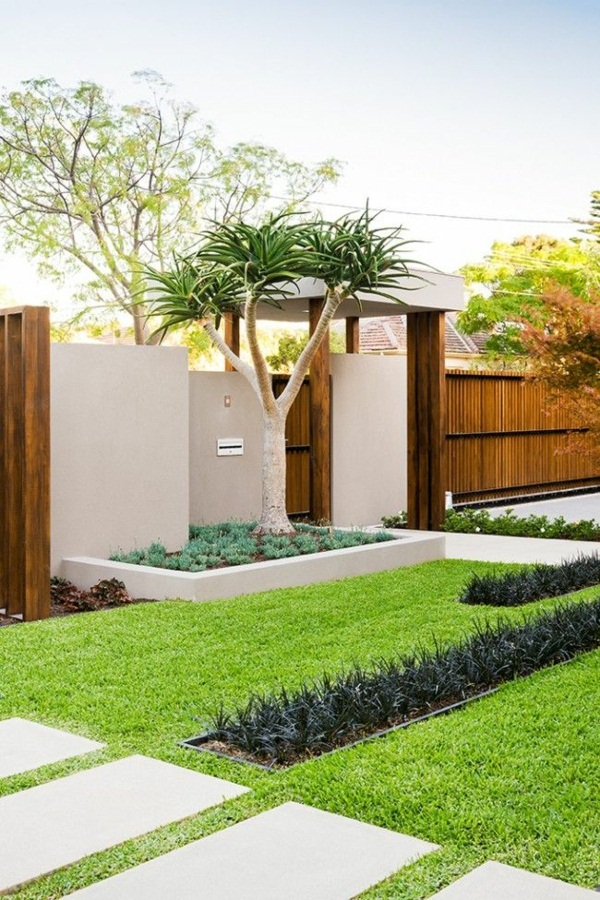 my beautiful garden modern garden tips