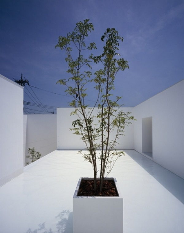 Minimalist concrete home in kanazawa decor10 blog for Minimalist house with courtyard