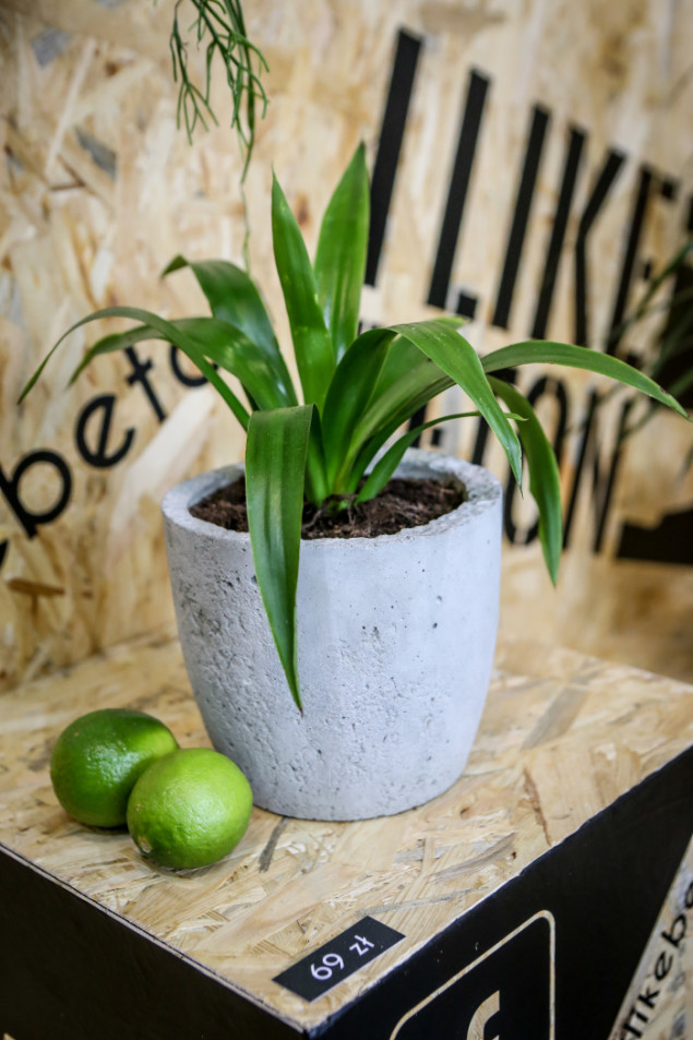 I Like Beton Concrete Plant Pot