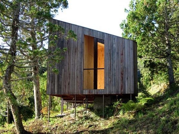 Wall tiling-natural wood wood sauna design