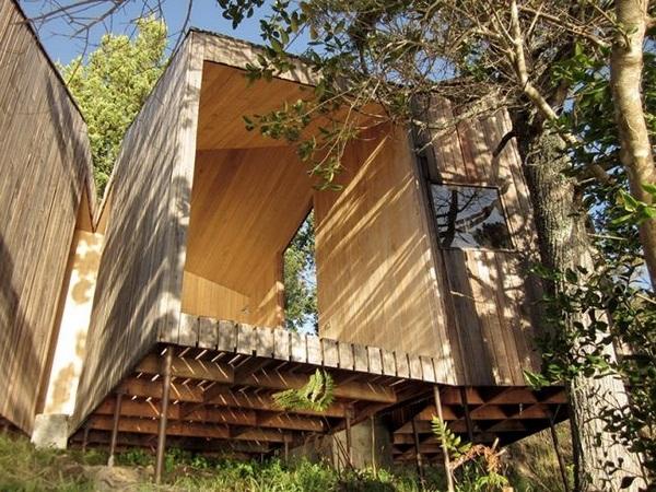 fine structure wood sauna design