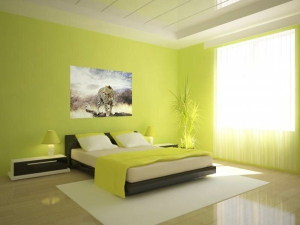 Wall in green lime green