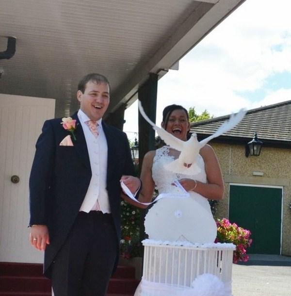 Wedding to elegant doves to wedding