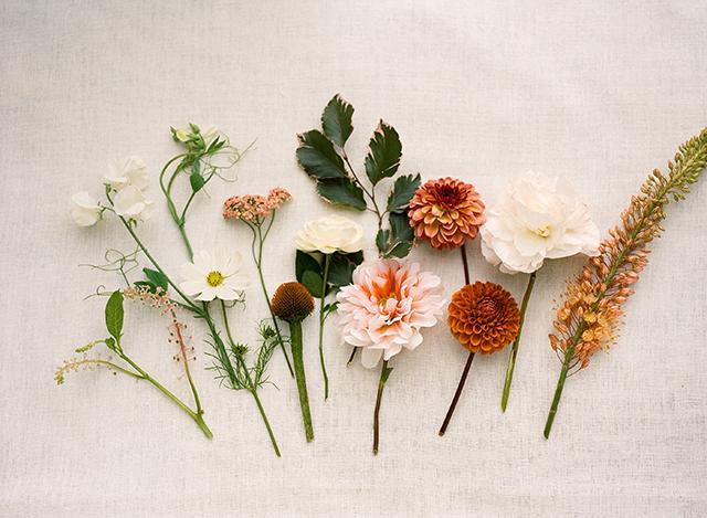 seasonal-flowers-june-loop-flowers-christina-mcneill-03