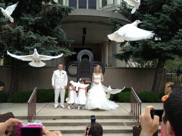 photographer wedding doves with the bridesmaid