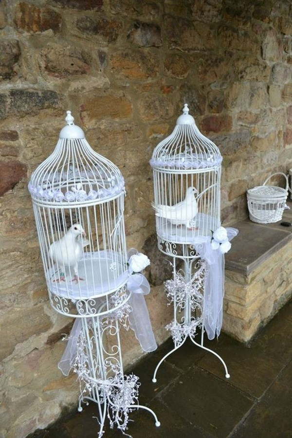 Pigeons for wedding decorated cages