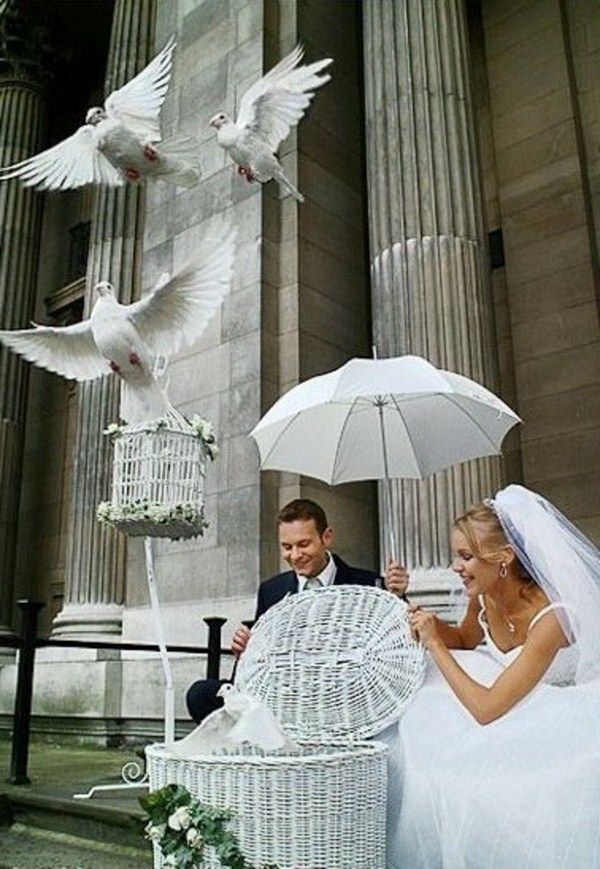 Pigeons fly naked with umbrella