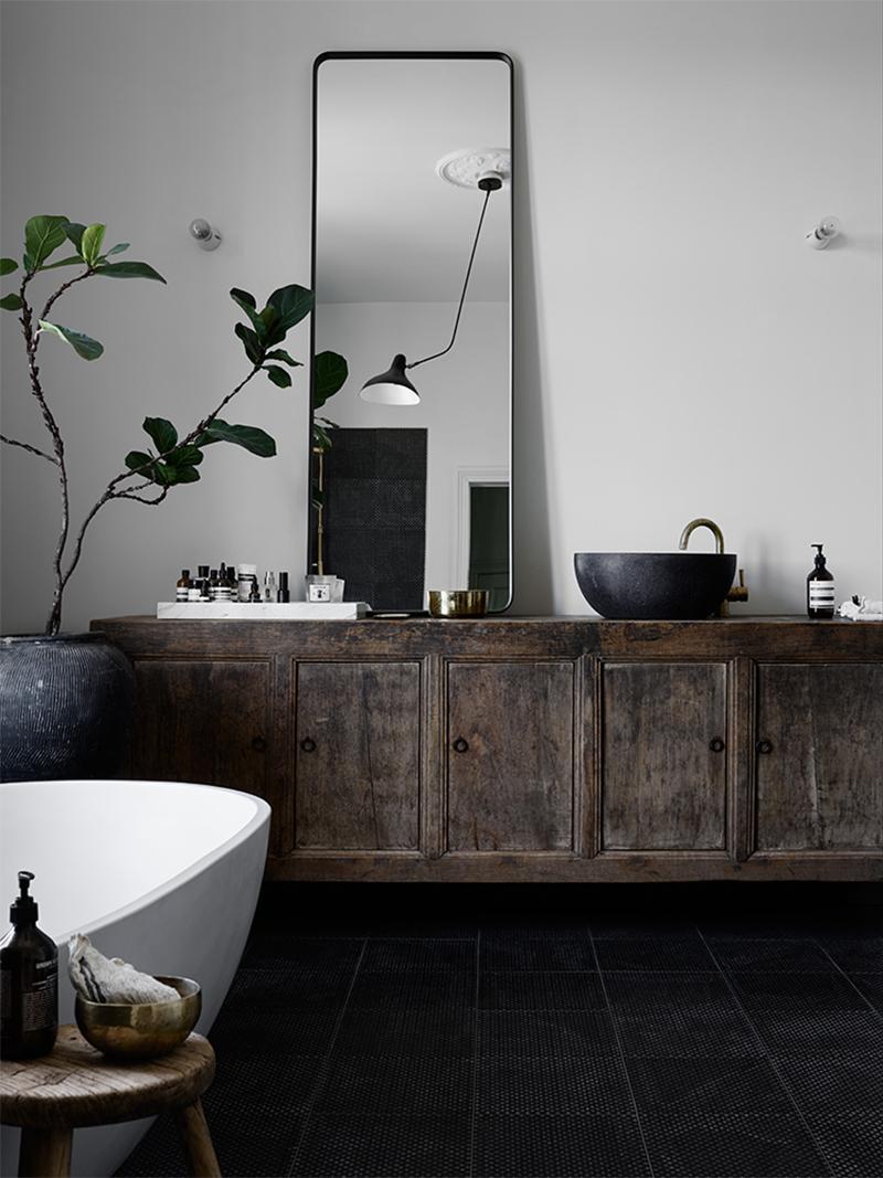 bathroom with black textured floor tiles, old vintage cabinet, big green plant