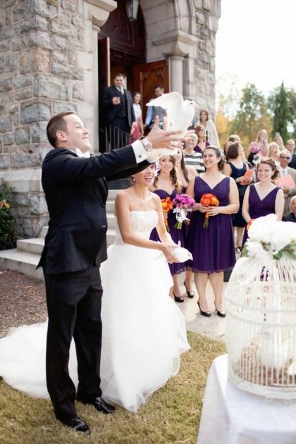 release wedding pigeons is pleasant