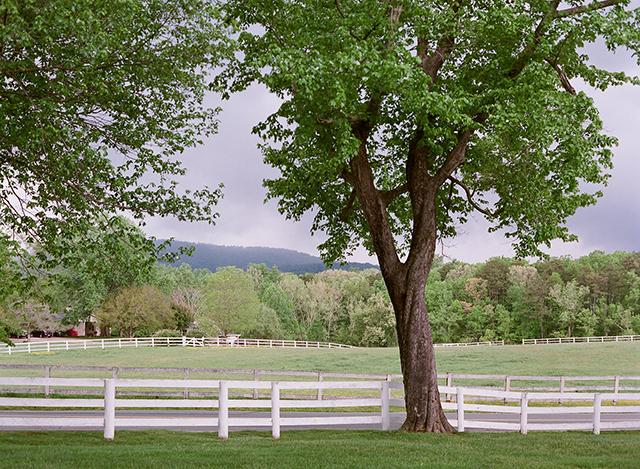 3-virginia-countryside-white-picket-fence-jen-fariello