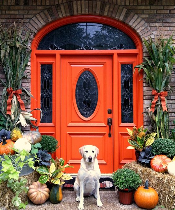vintage orange front door with a glass pane and pumpkins highlighting it