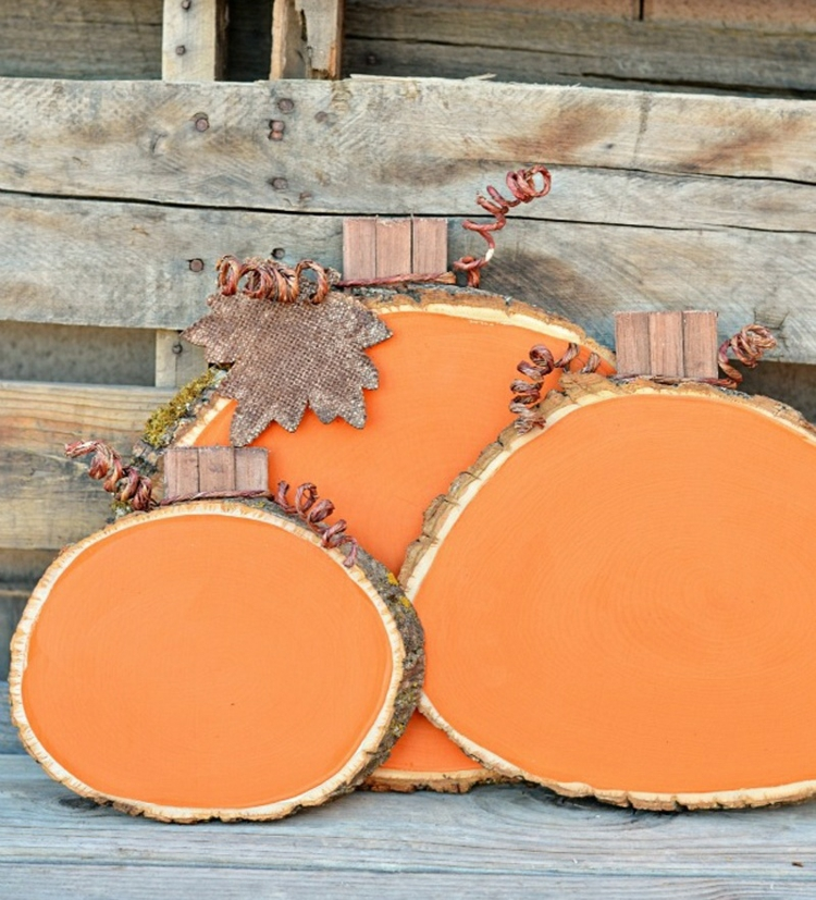 decoration wood disks autumn decorate free style bites arrange color orange