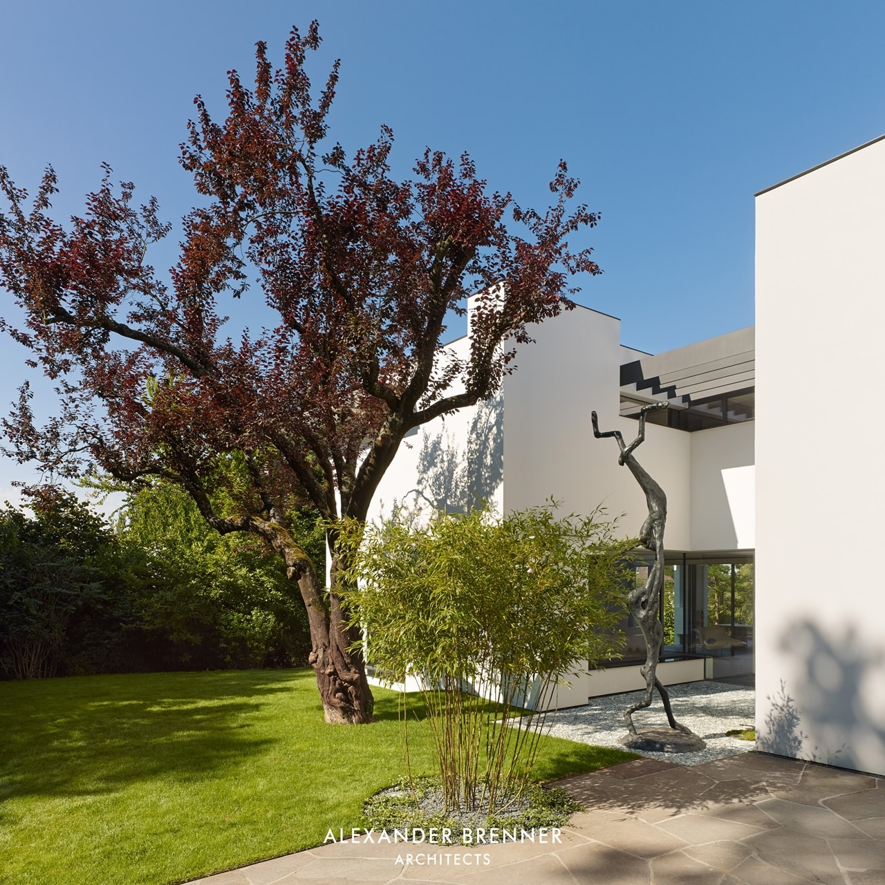 A tree in front of modern villa by Alexander Brenner