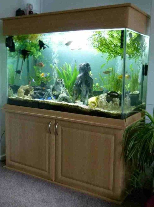 aquarium cabinet you create an exotic atmosphere at home decor10 blog. Black Bedroom Furniture Sets. Home Design Ideas