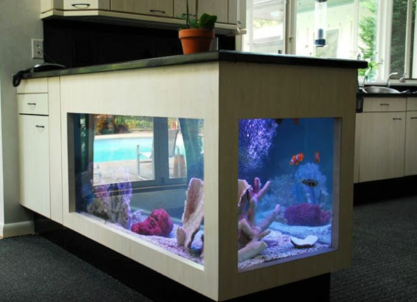 aquarium island in the kitchen