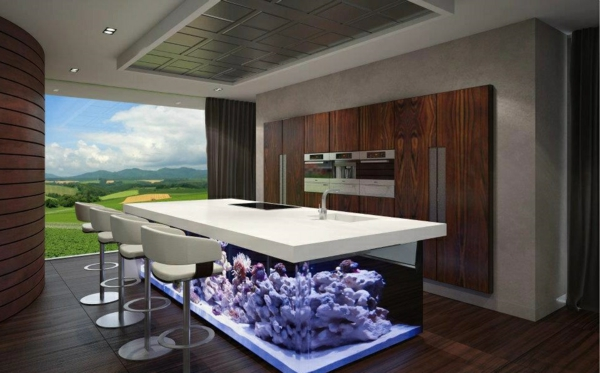 kitchen island ideas aquarium