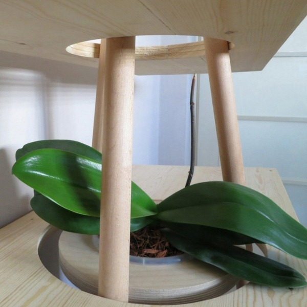 Shelf system modern solid oak integrated flowerpot Produced sustainably