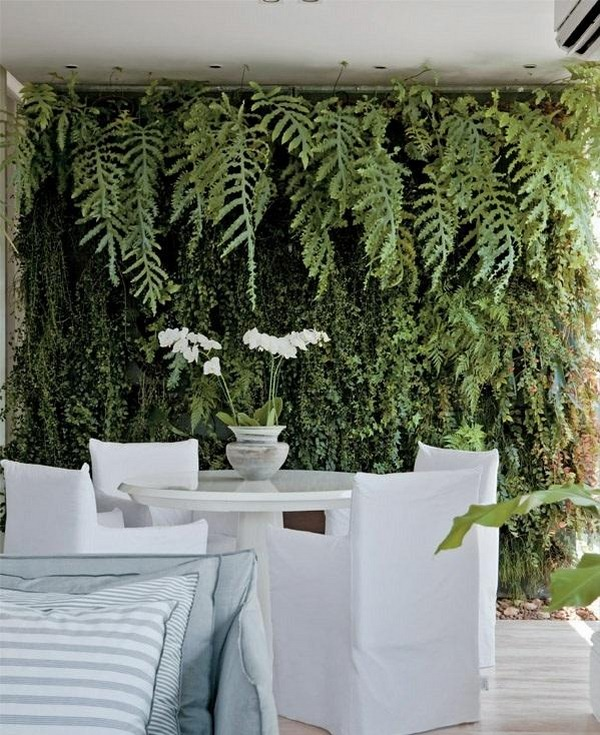 terrace design ideas color design green home color houseplants plan